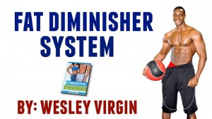 Fat Diminisher by Wes Virgin