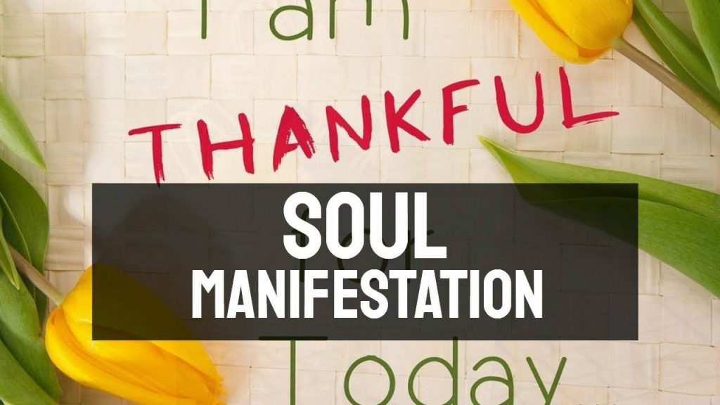 Soul Manifestation 2.0 Program